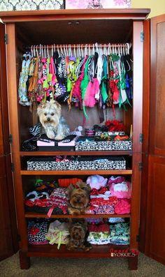 Pet Accessories, Dog Toys, Cat Toys, Pet Tricks