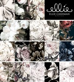 Wallpaper Collection Sample Pack - Floral Wallpaper Samples - by Ellie Cashman Design