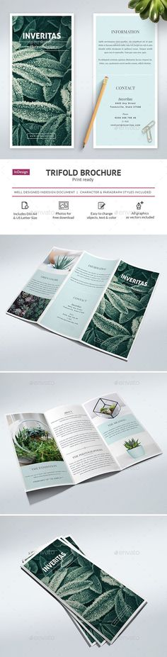 Clean Trifold Brochure Template InDesign INDD