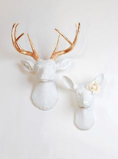 The Stag & Doe by White Faux Taxidermy. A perfect match between the buck (The Alfred) and the gorgeous doe (The Ophelia). This fun couple is