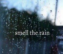 amazing, love, outdoors, raining, tumblr, cold, life, live, quote, rain, water, smell, windy