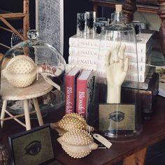 The Shop Curator in Edison, Washington by @fadedsummer on instagram