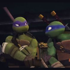Image result for tmnt donnie and leo