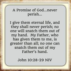 www.promisesbygod.com