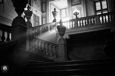 La luce filtra attraverso le grandi vetrate del Palazzo Reale a Torino. Questa bella fotografia la propone @mauriziobeucci  __________________________________  I G  S P E C I A L  M E N T I O N  B & W  O F  T H E  D A Y |  F R O M | @ig_turin_ A D M I N | @emil_io & @giuliano_abate  S E L E C T E D | our team F E A U T U R E D  T A G | #torino #ig_turin  #ig_turin_ #ig_torino M A I L | igworldclub@gmail.com S O C I A L | Facebook  Twitter  Pinterest L O C A L  S O C I A L…