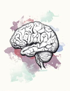 The Essential series BRAIN PRINT - Unframed  Human beings are dependent on…