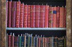 Vienna - Lichtenstein Museum and Library, Austria. Baroque Bookshelf.