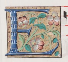 17 beautiful illuminated letter E images from a 16th Century Manuscript. Blue and white letters decorated with flowers, vines, leaves and berries.