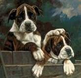 Realistic painting of boxers