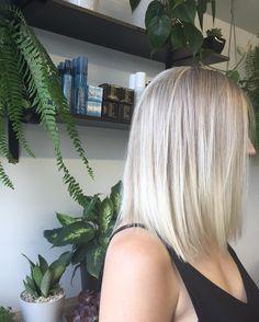Amongst the Paul Anthony jungle appears a stunning icy blonde Lob. #hair#hairtrend#blondehair#sydney#pottspoint#salon#haircolour#newyork#la#london#paris#sydneysalon#doublebay#darlinghurst#surryhills#wella#wellaeducation#womenstyle#ukstylist#melbourne#fashionista#style by womenofpaulanthony