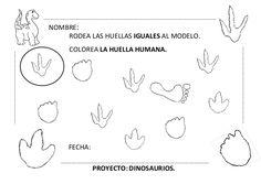 Proyecto completo dinosaurios. programación, fichas, recursos,pdf Activities, Montessori Activities, Activities For Kids, Dinosaurs Preschool, Dinosaur Projects, Early Childhood, Prehistory, Note Cards, Classroom