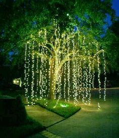 FAIRY LIGHTS TO TRANSFORM YOUR GARDEN: Starry String Lights w/120 Warm White LEDs on Copper Wire 20ft + FREE eBook. Ultra-thin. Amazingly Bright New Generation of Micro LEDs. Create Mesmerizing Hanging Garlands for Events. Wrap Around Your Backyard Trees with our Led Wire Strings providing Wonderful Decorations for Christmas. Add a String or More to your Teens' Bedrooms Tinging them with a Light Fairy Looks,