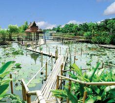 Water garden Ayuthaya, Thailand