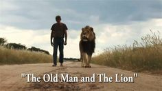 """Frederik, aka Frikkie is a remarkable 70-year-old animal handler at the Harnas Wildlife Foundation in Namibia. He raised the orphaned """"Zion the Lion"""" from a cub and 8 years later their friendship and bond is as strong as ever. Zion still enjoys a walk in the bush and eagerly jumps into the transport cage to enjoy an hour or two of stalking animals in the bush with his barefoot friend. To date no animal has ever been caught by Zion but hey the fun is in the chase not the kill right? ..."""