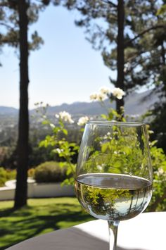 An afternoon in Franschhoek, South Africa