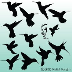 This listing is for an INSTANT DOWNLOAD for 12 Hummingbird Silhouette images as shown in the images above. ♥♥♥♥♥♥♥♥♥♥♥♥♥♥♥♥♥♥♥♥♥♥♥♥♥♥♥♥♥♥♥♥♥♥♥♥♥♥♥♥♥♥♥♥♥♥♥♥♥♥♥♥♥♥♥♥♥♥♥♥♥ Instant Download Pack Contains: Quantity: 12 PNG solid images with transparent backgrounds Format: 300 dpi Silhouettes in zipped file for easy downloading You can change the size to your needs. Also can be colored in another color with photoshop or a similar program…