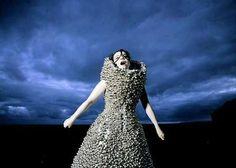 Björk and Alexander McQueen