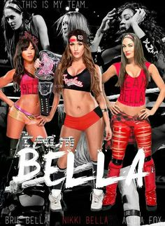 Alicia Fox Nikki & Brie Bella