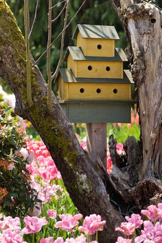 Multi tiered bird house in woodland field of tulip by Georgianna Lane