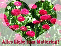 Картинки по запросу день матери в германии фото стихи