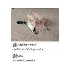 All I see is a box