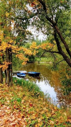 Looking into the camera & Bülent Gökçen & The post Looking into the camera & Bülent Gökçen autumn scenery appeared first on Trendy. Landscape Photos, Landscape Art, Landscape Paintings, Fall Pictures, Nature Pictures, Autumn Photography, Landscape Photography, Beautiful World, Beautiful Places