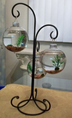 This would be awesome to keep betta fish! And it's pretty too :)