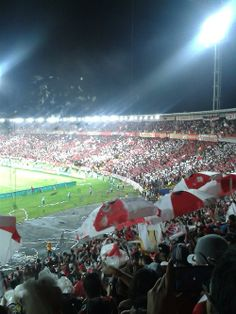 INDEPENDIENTE SANTA FE Fes, Football, Santa Fe, Santos, Lion, Strength, Red, Amigos, India