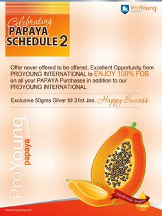 PAPAYA SCHEDULE 2 - Offer never offered to be offered,  Excellent Opportunity from PROYOUNG INTERNATIONAL to ENJOY 100% FOB on all your PAPAYA Purchases in addition to our PROYOUNG INTERNATIONAL Exclusive 50 gms Silver till 31st Jan.
