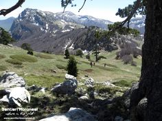 Oltre la montagna ho appeso l'equilibrio dei miei giorni, la parte migliore di me, la luce di un sorriso che l'ombra del quotidiano non può spegnere.  www.sentierimoranesi.com