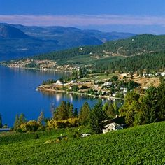 A Foodie Tour Through Kelowna, B. -- Curated by Quality Tires 1939 Bredin Road, Kelowna, BC, Canada O Canada, Canada Travel, West Coast Canada, Western Canada, Just Dream, Travel News, British Columbia, The Great Outdoors, Places To See