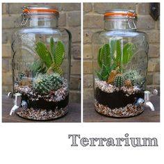Kilner Jars, Terrarium Ideas, Terraria, Jar Crafts, Craft Ideas, Make It Yourself, Beautiful, Instagram, Home Decor