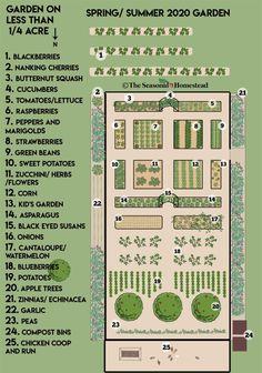 Quarter-Acre Garden Plans 2020 - The Seasonal Homestead - Modern Design Backyard Plan, Backyard Farming, Backyard Ideas, Farm Landscaping, Garden Design Plans, Vegetable Garden Design, Vegetable Bed, Vegetable Garden Planner, Vegetable Gardening