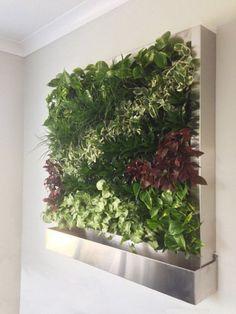 Plug and Play | Green Living Technologies
