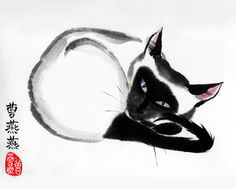 """'Fuzzy Content' by Tracie Griffith Tso ©Copyright 2012  A siamese cat contemplates, curled and content. Siamese, known as """"Moon Diamond"""" in native Thai, are known for their intelligence and unique characteristics. They are said to be descended from sacred temple cats that ward off evil and bring good luck."""