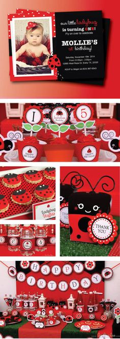 Ladybug Birthday Party 1st Girls 2nd Parties Ideas Girl