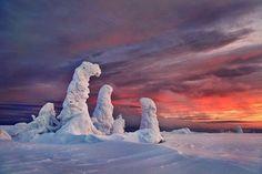 http://www.fubiz.net/2015/01/18/frozen-trees-photography/
