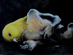 Painting by Ottavio Taranto, Italy. Untitled, 2014. Cm 80x60