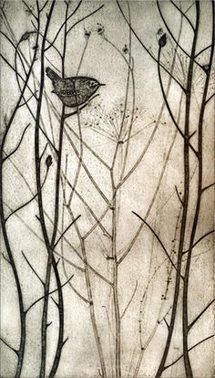 Foraging Wren - collagraph print - Kerry Buck