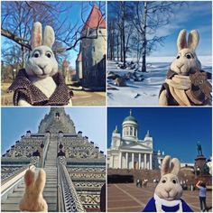 Travelling bunny Travel Toys, His Travel, Future Travel, Otters, Trip Planning, Mount Rushmore, Travelling, Bunny, Teddy Bear
