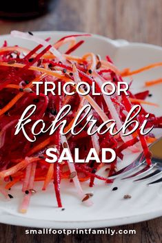 Tricolor Kohlrabi Slaw Kohlrabi is a really strange looking vegetable related to broccoli and Brussels sprouts. It's delicious, nutritious and easy to prepare. This simple slaw recipe will help you get the most out of this tasty, odd little vegetable. Slaw Recipes, Healthy Salad Recipes, Whole Food Recipes, Vegetarian Recipes, Turnip Recipes, Carrot Recipes, Paleo Vegan, Raw Vegan, Paleo Life