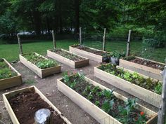Garden boxes. Oh how I wish our garden looked like this!