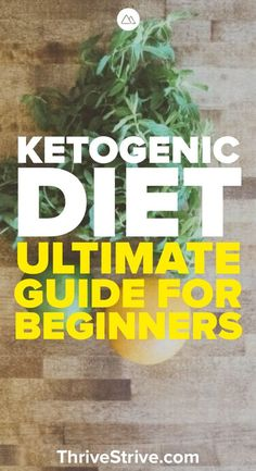 What is the ketogenic diet? This guide will help to explain ketosis and why the keto diet might be for you.