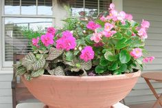 Looking for container gardening ideas? HouseLogic has great container garden plans for your home, ideal for small space gardening.