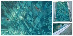 지구 온난화를 경고하는 수영장 공익광고 2가지