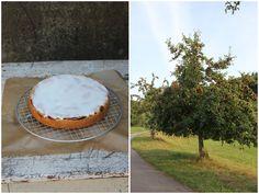 Gedeckter Apfelkuchen, schmeckt besser als vom Bäcker und geht ganz einfach. Mit Knetteig und Zuckerguss, lecker und saftig. Und hier ist das Rezept http://wolkenfeeskuechenwerkstatt.blogspot.de/2012/09/gedeckter-apfelkuchen.html
