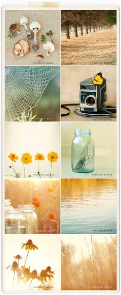 LOVE THIS.  blog.mandylynne.com