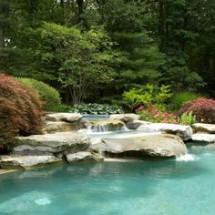 Natural Pools Design, Pictures, Remodel, Decor and Ideas