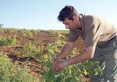Έως 22.000 ευρώ η ενίσχυση για τους νέους αγρότες στο πλαίσιο του ΠΑΑ