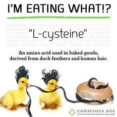 What's in your morning bagel? There's a high chance it contains either human hair or duck feathers, and it's your guess as to which. The substance, called L-cysteine or cystine, is used as a dough conditioner to produce a specific consistency. Dough Conditioner, Vegan Facts, Vegan Memes, Vegan Quotes, Vegan Humor, Why Vegan, Bad Food, Eating Organic, Food Facts